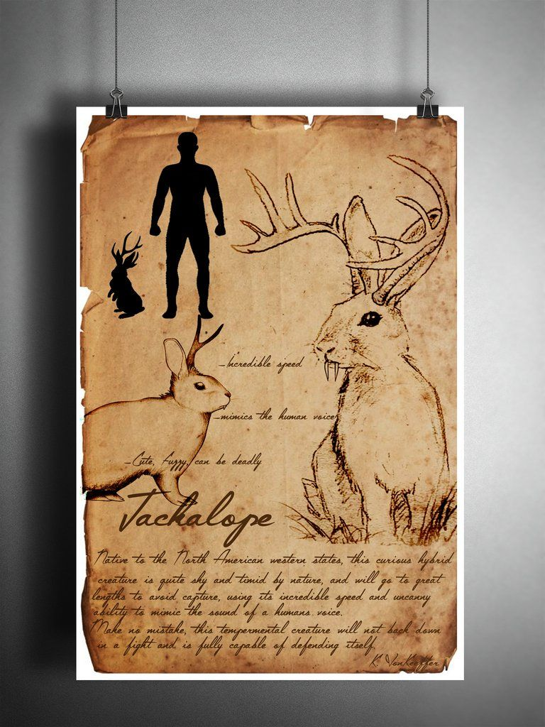 The Wendigo From Native American Legend To Reported Cryptid