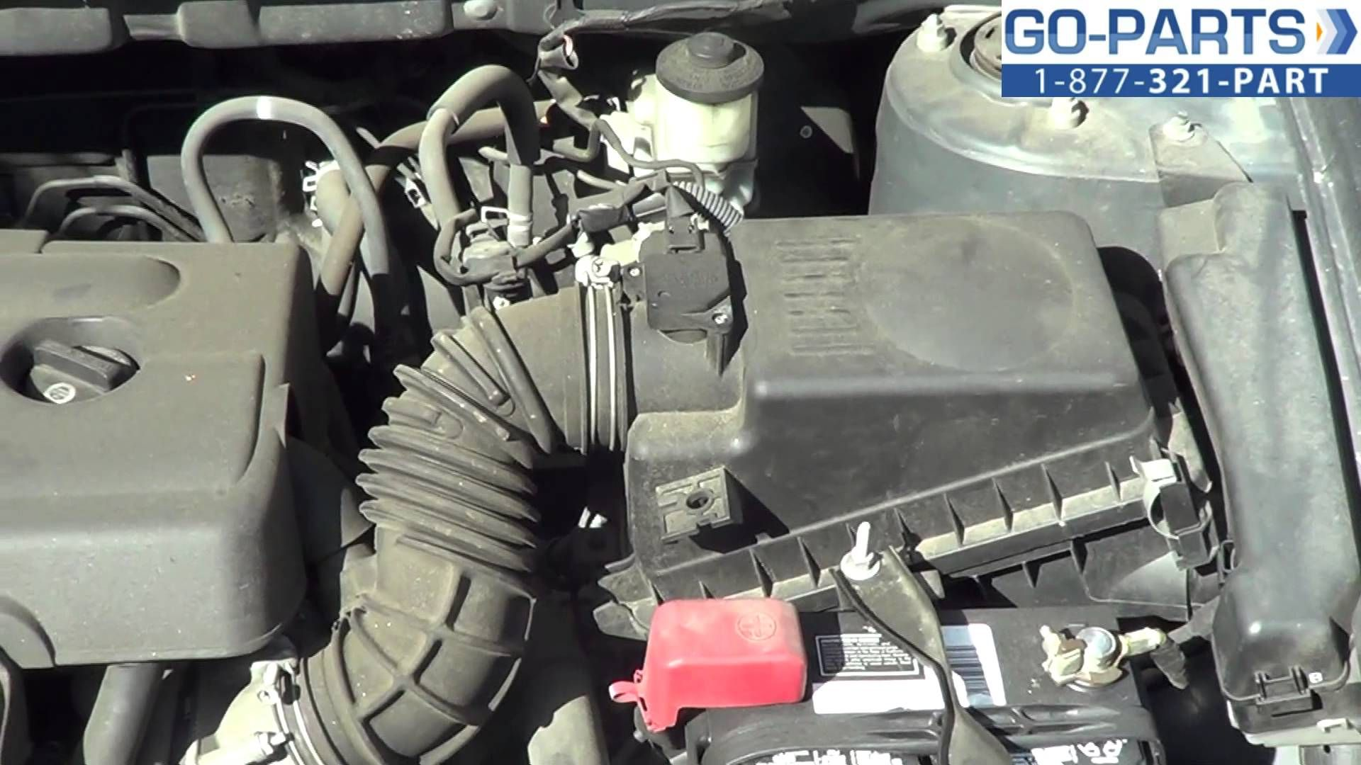 hight resolution of corolla fuel filter location