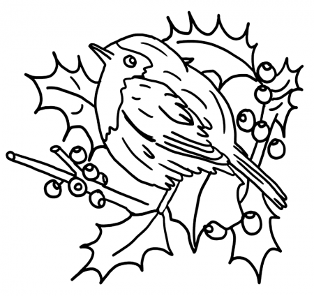 Robins Coloring Pages - coloring.rocks!   Bird coloring ...