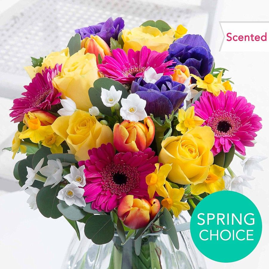 Vibrant Spring Flowers Just 2599 On Httpbit2lnlbyb