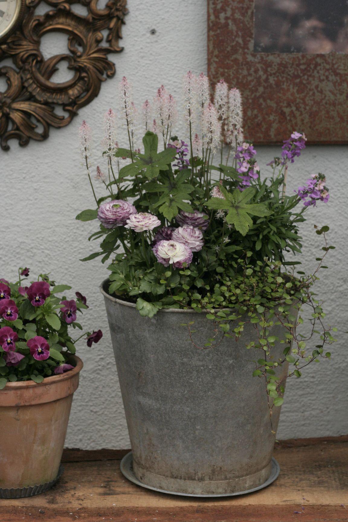 Photo of planteringar i kruka  Sök på Google #perennials #planteringar #google #kruka #