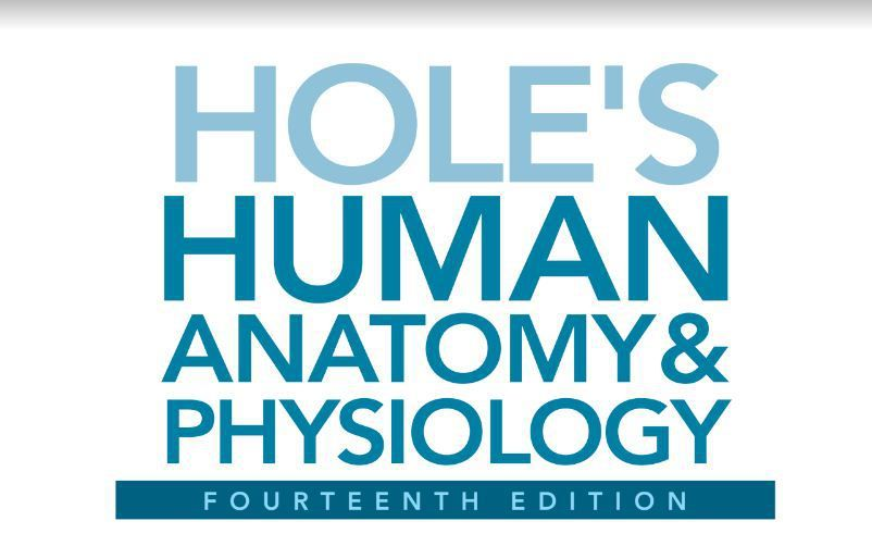 Hole\'s Human Anatomy and Physiology 14th edition pdf download | PDF ...