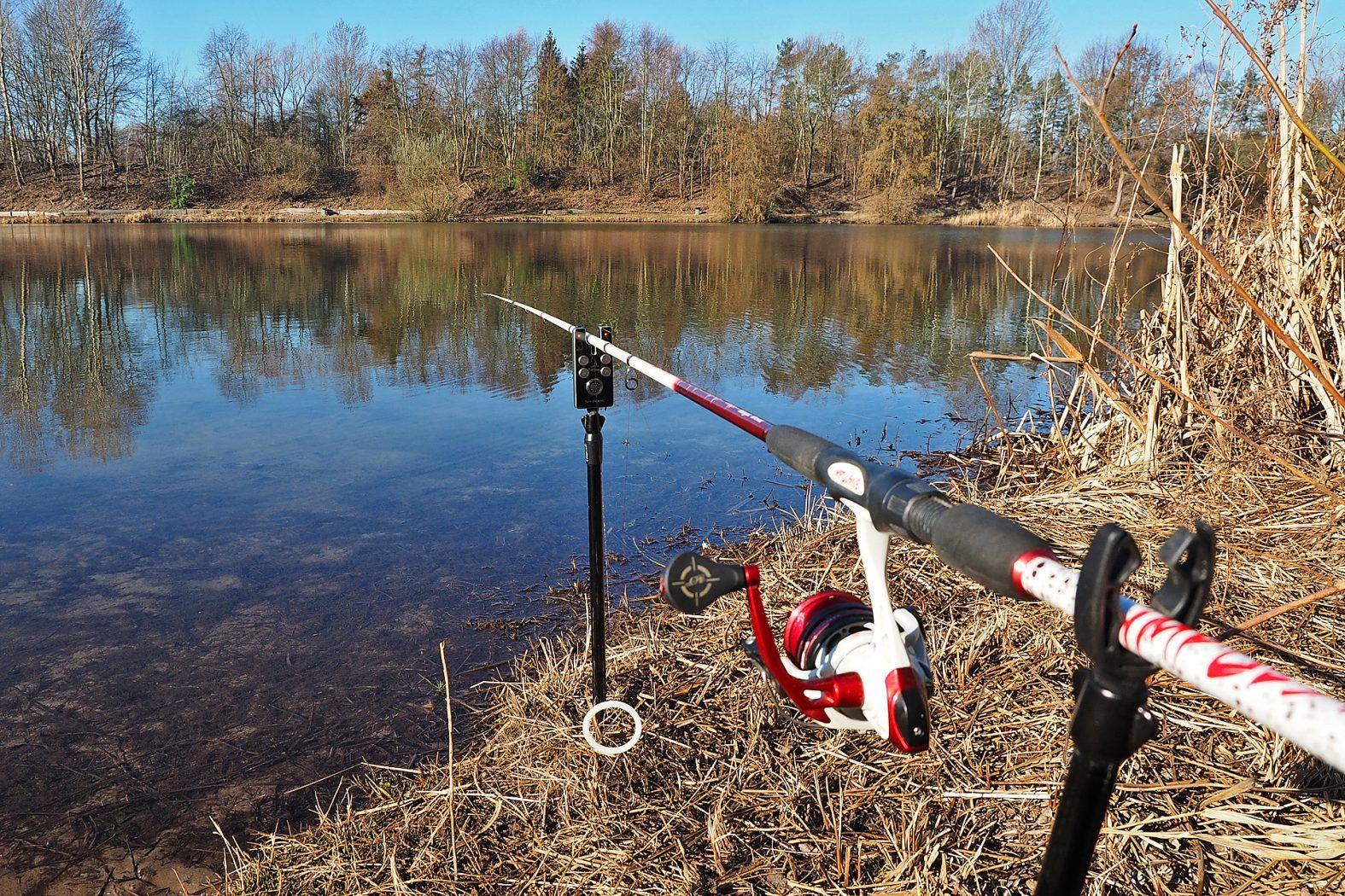 Grundangeln auf Forellen | Forelle, Forellen angeln, Angeln