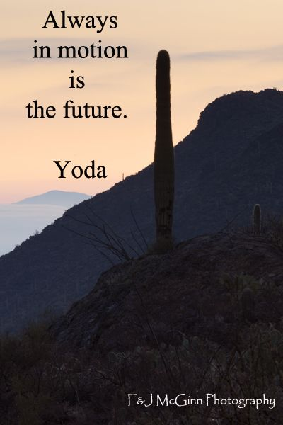 Always In Motion Is The Future Yoda Yoda Quotes Explore
