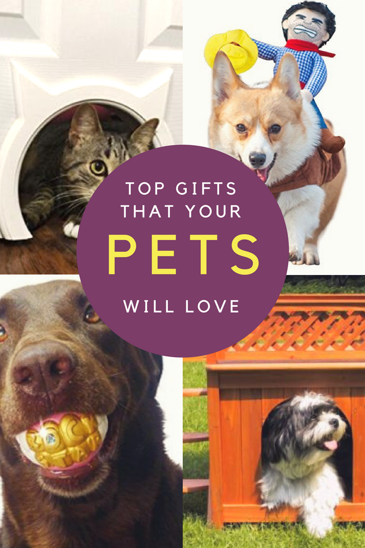 Take A Look At These Cool Gifts For Dogs Cats And Lots More Pet Cat Dog Catlady