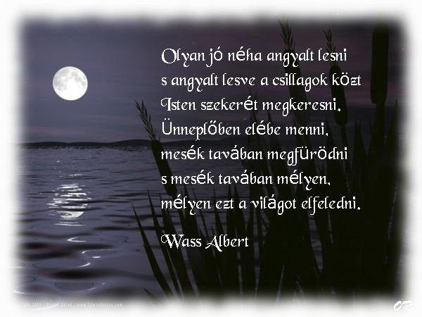 wass albert idézetek szerelem Wass Albert (With images) | Idézetek, Versek, Gondolatok