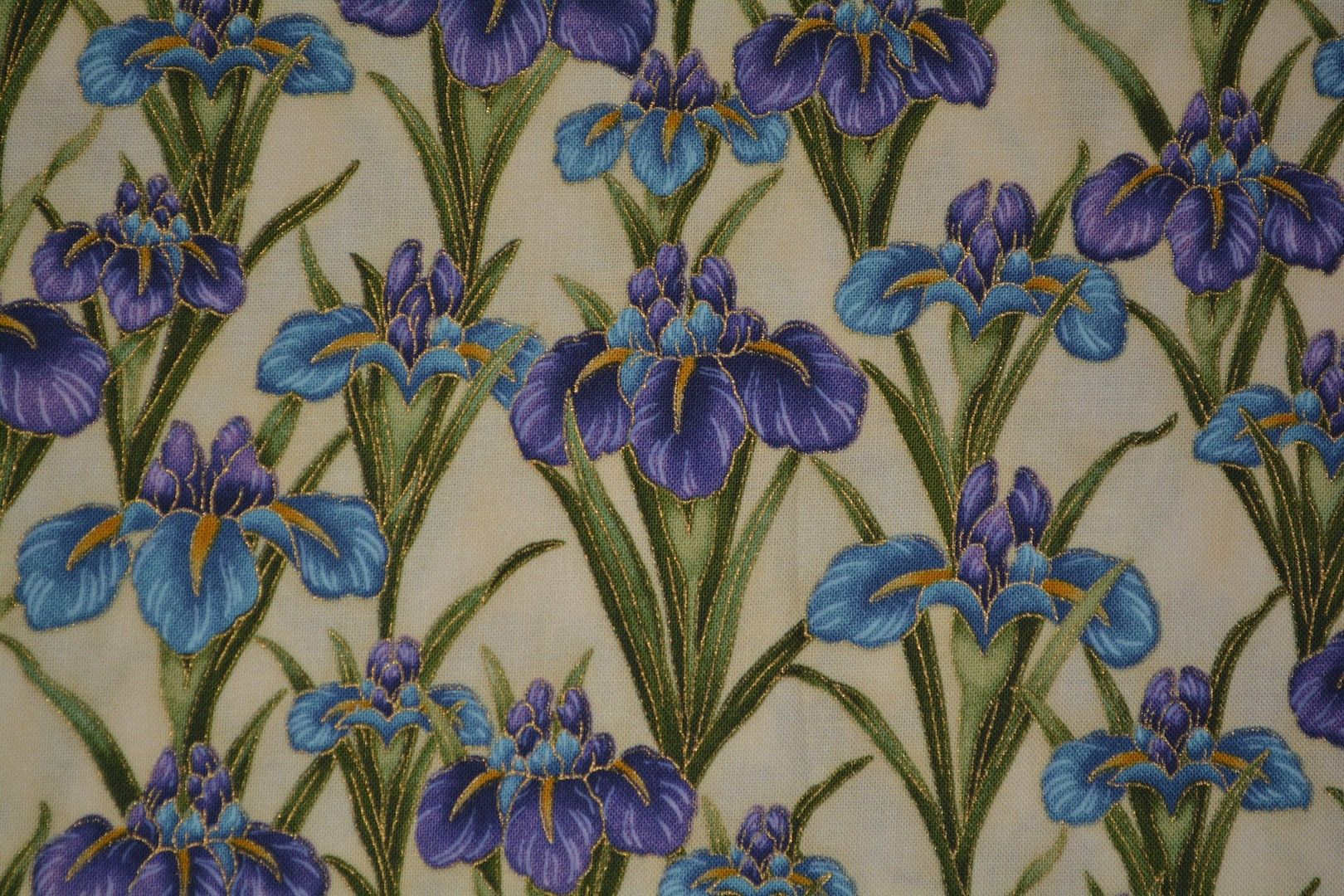 Japanese Iris Flowers Fabric Robert Kaufman Imperial Collection Asian Floral Blue Purple Irises By Sewlaviefabrics On In 2020 Purple Iris Iris Flowers Beautiful Print
