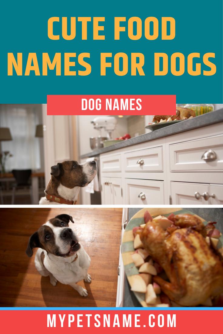 Cute Food Names For Dogs In 2020 Food Names Pug Names Cute Pet Names
