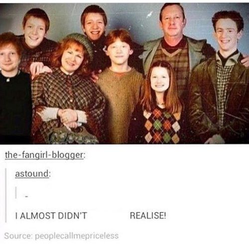 Ed Sheeran Harry Potter And Funny Image Harry Potter Movies Harry Potter Weasley Family