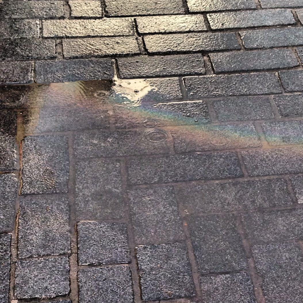 Rainbow in water pool