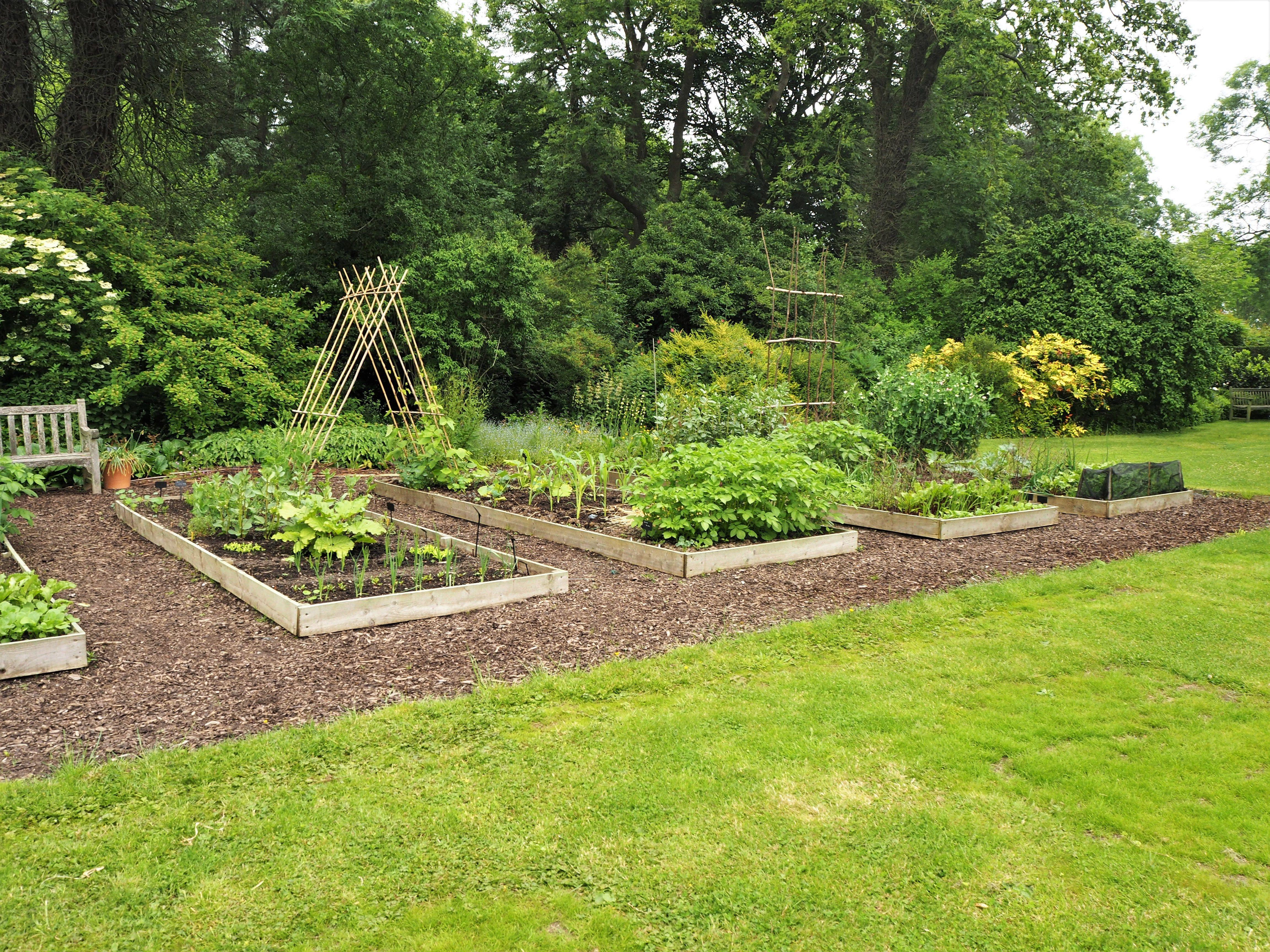 Harlow Carr Gardens, Harrogate - Self Arranged Journeys ...