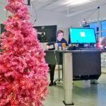 Joulu saapui juuri Tampereen Radioon. Alunperin tavaratalon pinkki somistekuusi on kuulunut Yle Tampereen jouluun jo 1980-luvulta lähtien. #joulu