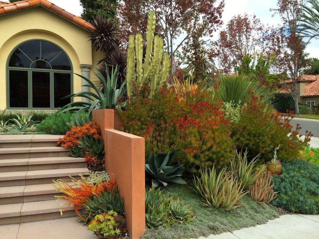 Carmel Valley Succulent Garden - Amelia B Lima & Associates ...