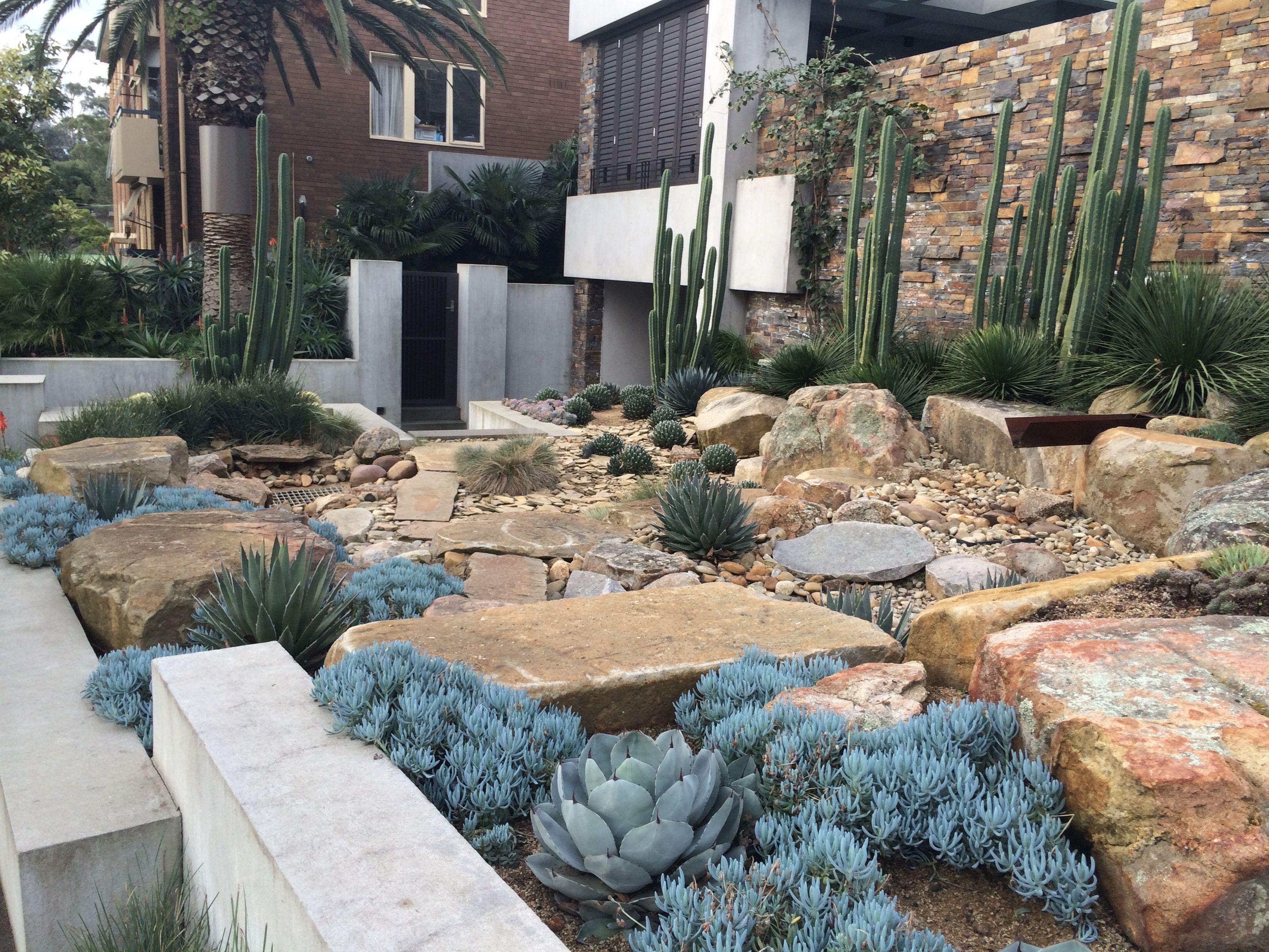 Xeriscape Succulent landscaping, Garden landscaping