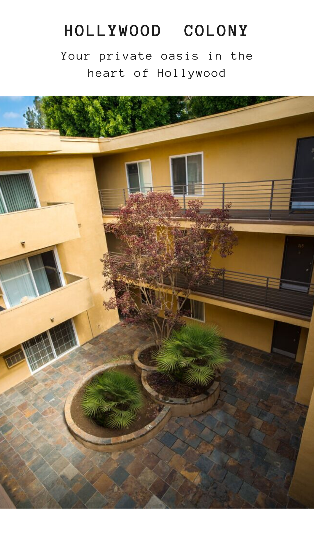 Perfectly Located For Rent Apartments In Hollywood Ca Apartments Hollywood Located Perfectly Rent Apartments For Rent Cool Apartments Hollywood Apartment