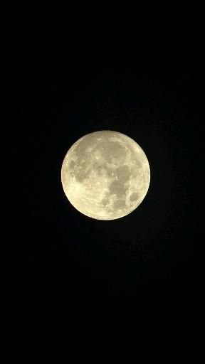 #fullmoon #filmmkrs #ig_shotz #moon #timelaps3 #main_vision #master_shots #hyperlapse #hubs_united #green #worldshotz #theworldshotz #pixel_ig #film #tamron #photographysouls #videooftheday #photographylover #zeisscameralensesindia  #ig_great_pics #ig_myshot #shotwithlove #love #videography #collectivecreate #sonya7iii #india