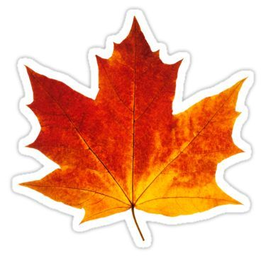 Autumn Maple Leaf Sticker By 6hands Aesthetic Stickers