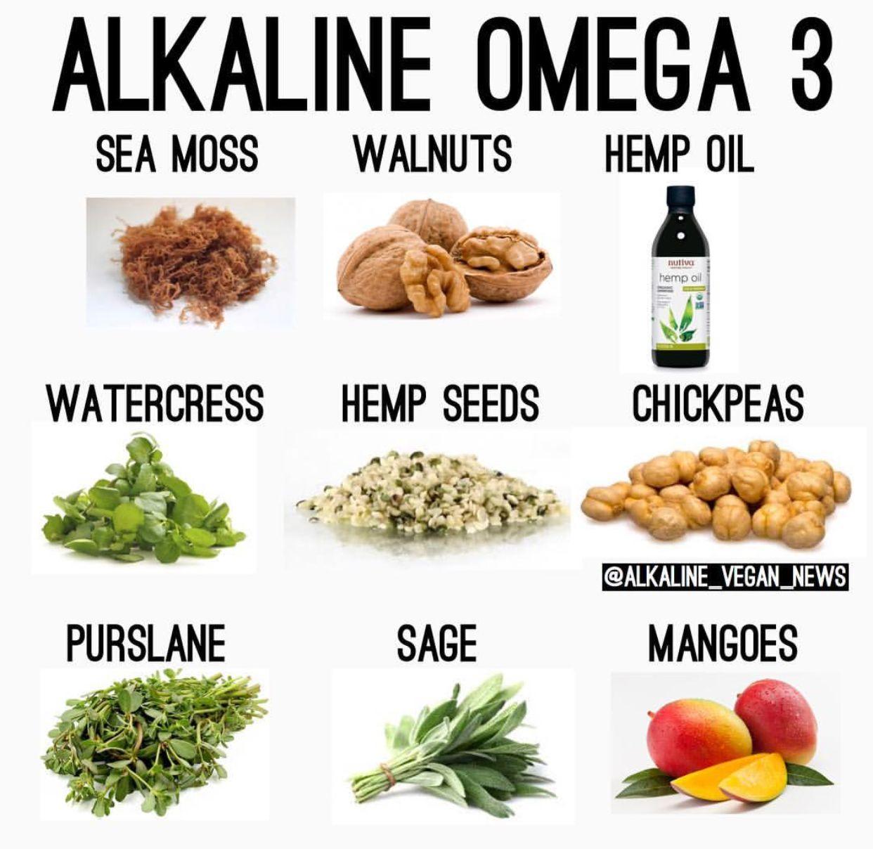 Alkaline Omega 3 Food Dr Sebi Alkaline Food Alkaline Diet Recipes Alkaline Diet