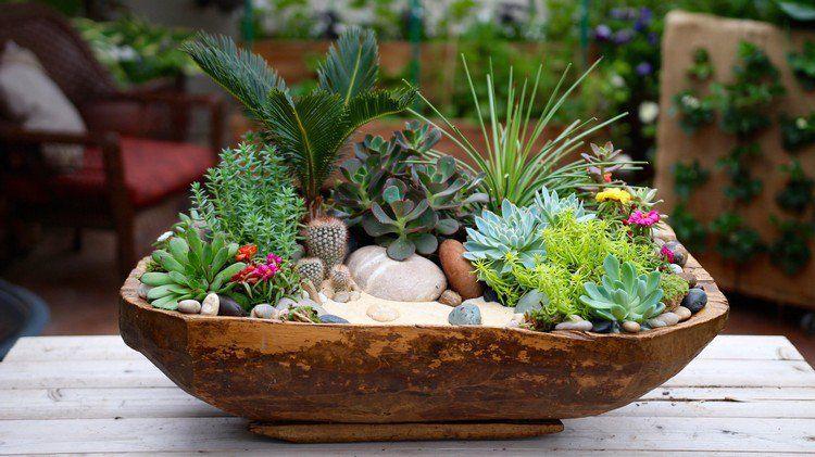 D co bois flott et plantes succulentes bac fleurs en for Galets plats decoratifs