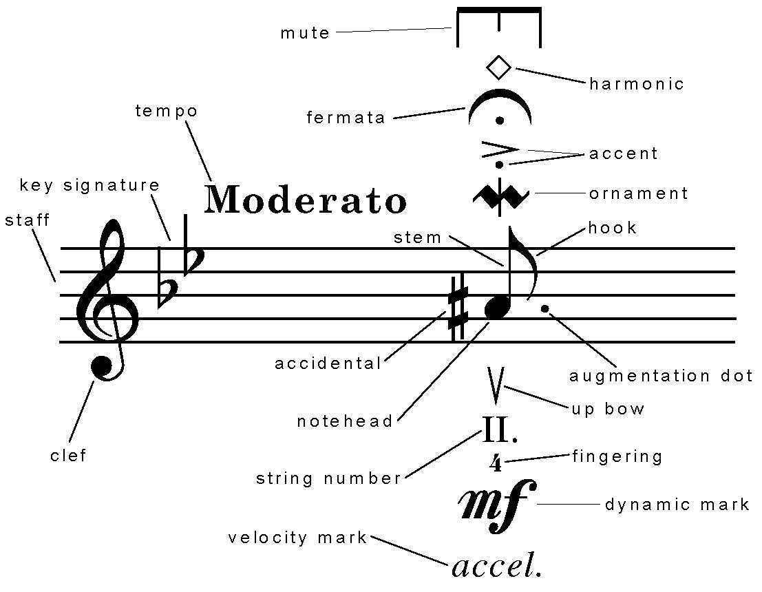 Aussie musician all the guff on music notation sheet music aussie musician all the guff on music notation symbols biocorpaavc