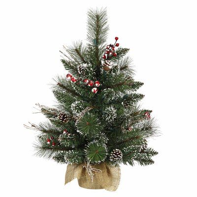 The Holiday Aisle Snow Tipped Berry 2\u0027 Green Pine Artificial