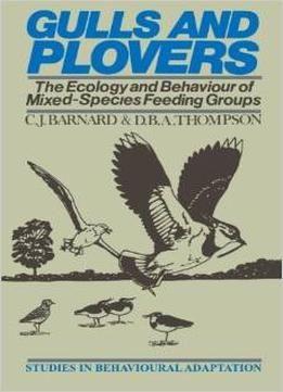 Gulls And Plovers Pdf Gull Free Pdf Books Animals