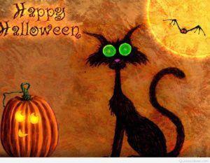 Black Cat Halloween Pumpkin Card Saying.