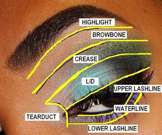 The fancy face tips for beginners eyeshadow placement and the fancy face tips for beginners eyeshadow placement and application eye diagram ccuart Gallery