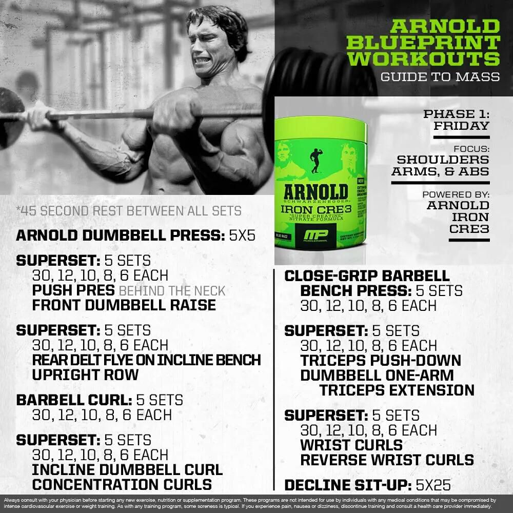 Arnold blueprint workout 8 workouts pinterest workout muscle arnold blueprint workout 8 malvernweather Image collections