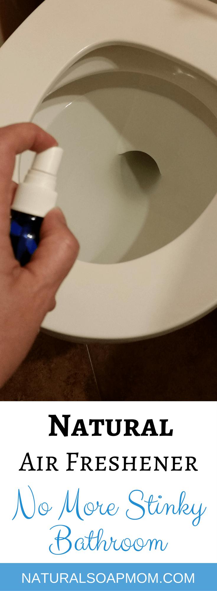 The Stinky Bathroom Solution - DIY All Natural Air ...