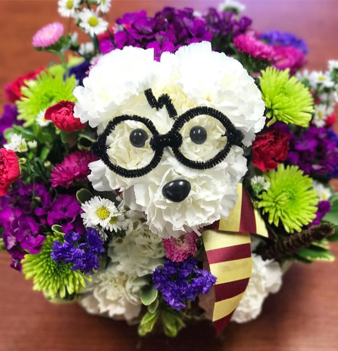 Hy Birthday Harry Potter From Your Gest And Most Adogable Fan Harrypupper