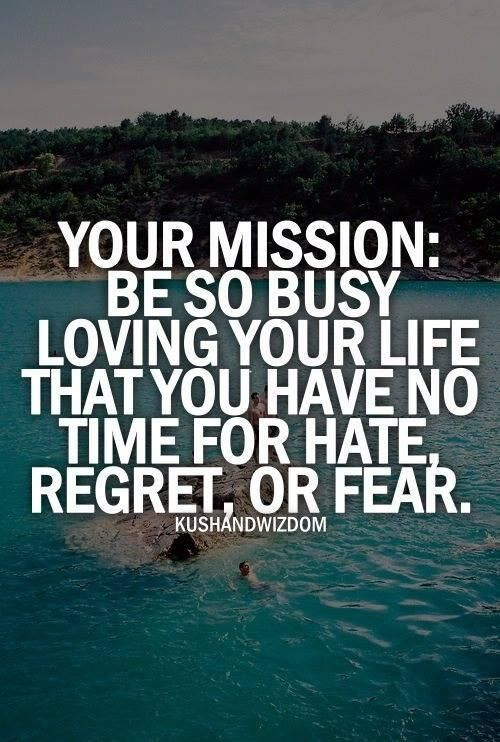 Your mission: Be so busy loving your life that you have no time for hate, regret or fear. #Wisdom