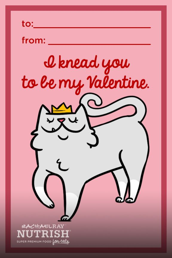 A Lovely Valentine Message From The Cat This Printable Is The Purrfect Valentine S Day Card Pet Parent Cat Valentine Funny Babies