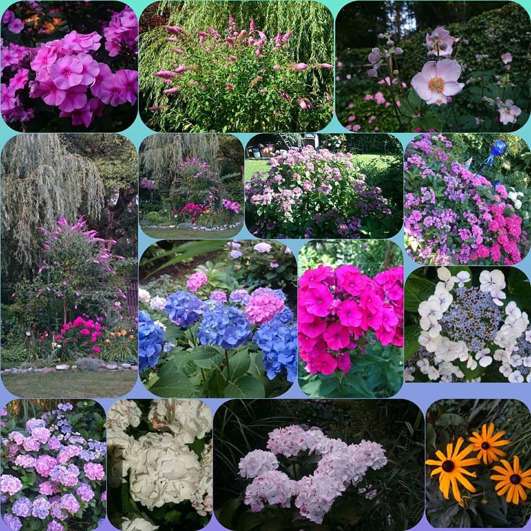 Entspannung Pur Garden Gardeninspiration Gardening Garten Gartengestaltung Gartenliebe Gartengluck Gartenideen Garten Ideen Garten Gartengestaltung