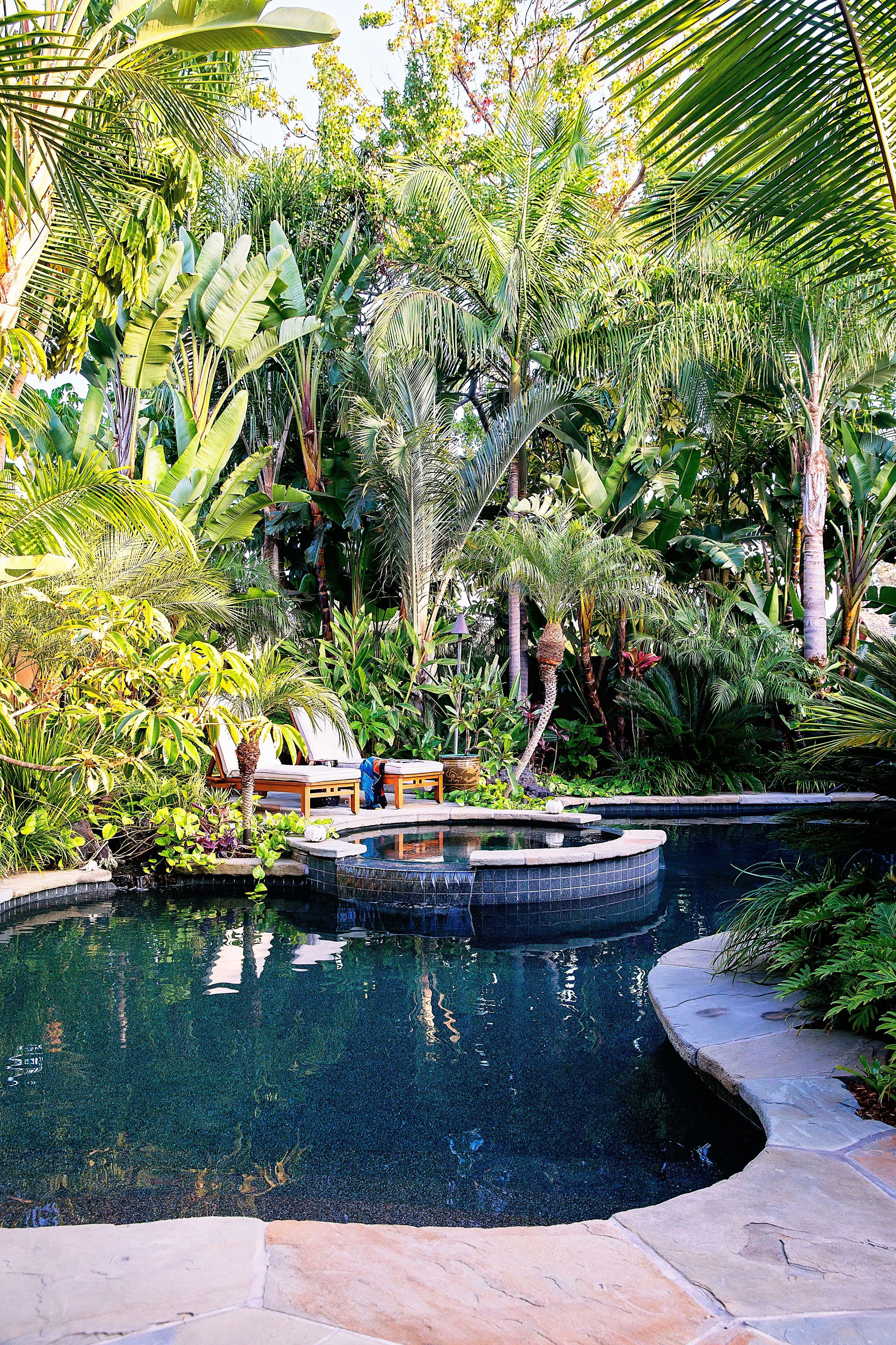 How To Design A Lush Tropical Retreat Tropical Pool Landscaping Backyard Pool Landscaping Tropical Backyard