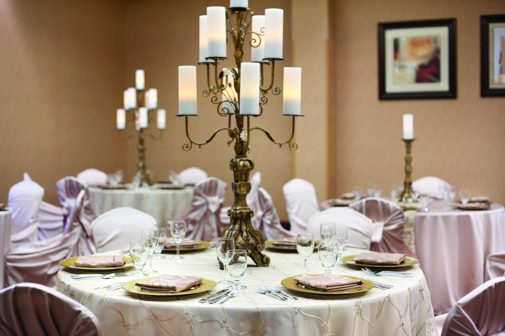 Embassy Suites Minneapolis - North | Wedding Destinations ...