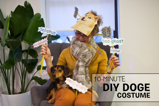 Easy $1 --- 10-Minute Halloween Costume for Internetty Dog Lovers - super easy halloween costume ideas