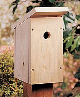 Build a e Board DIY Birdhouse