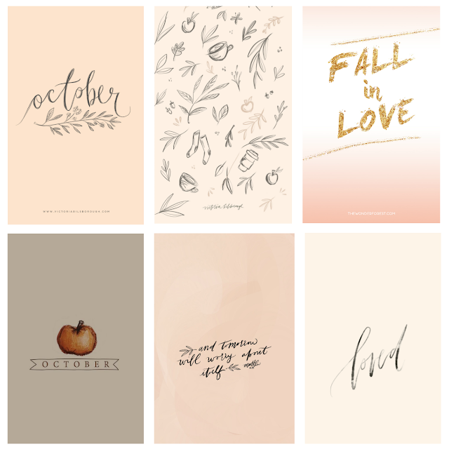 Free Girly And Shabby Chic Fall Wallpapers Fall