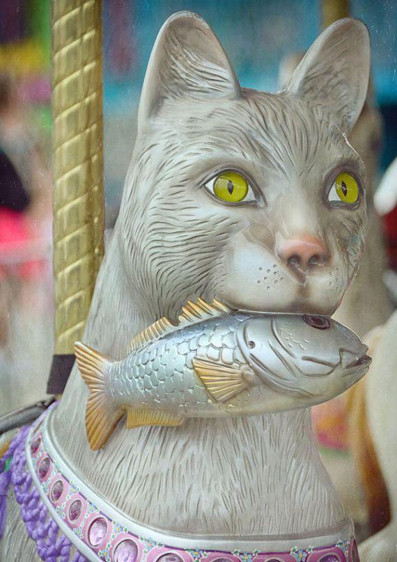 CAROUSEL CAT, State Fair, Monroe, WA