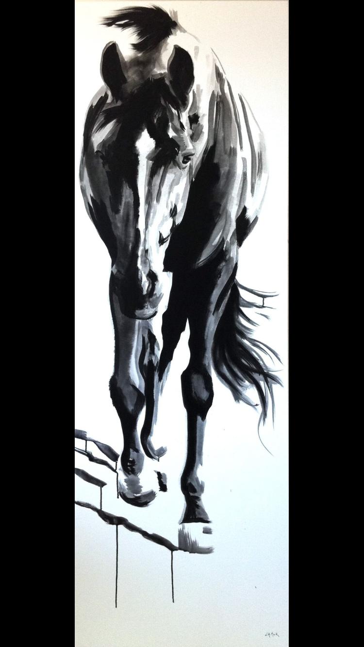 Pin von Alice Aldridge auf Equine Love ♥   Pinterest   Abstrakte