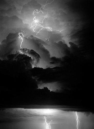 Beautiful Dark Things The Amazing Escape Plan Of Stellaluna Ravenwolf