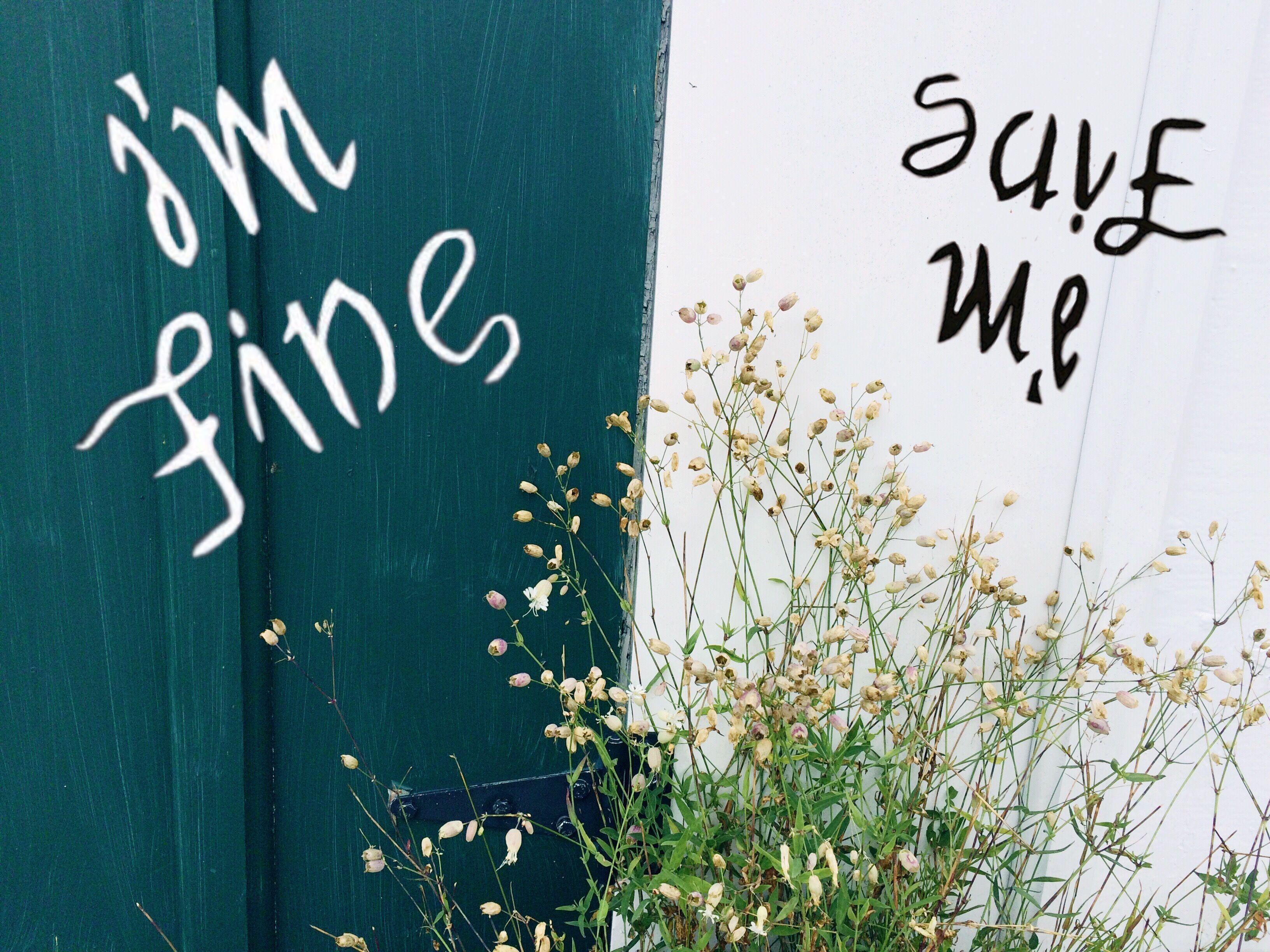 Bts wallpaper im fine save me