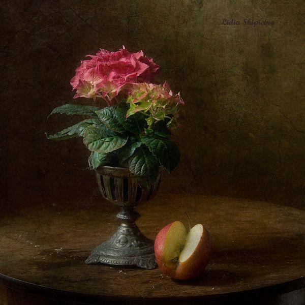 #still #life #photography • photo: Композиция с яблоком | photographer: Ли Ши | WWW.PHOTODOM.COM