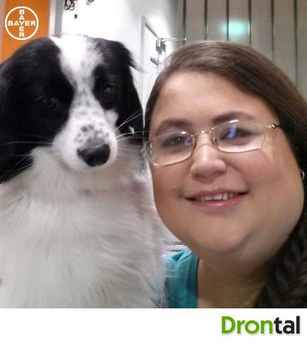 This beautiful dog really has brought joy to it's owner! #specialroles #mysuperstar #dog #animal For more info please visit www.facebook.com/DrontalUK