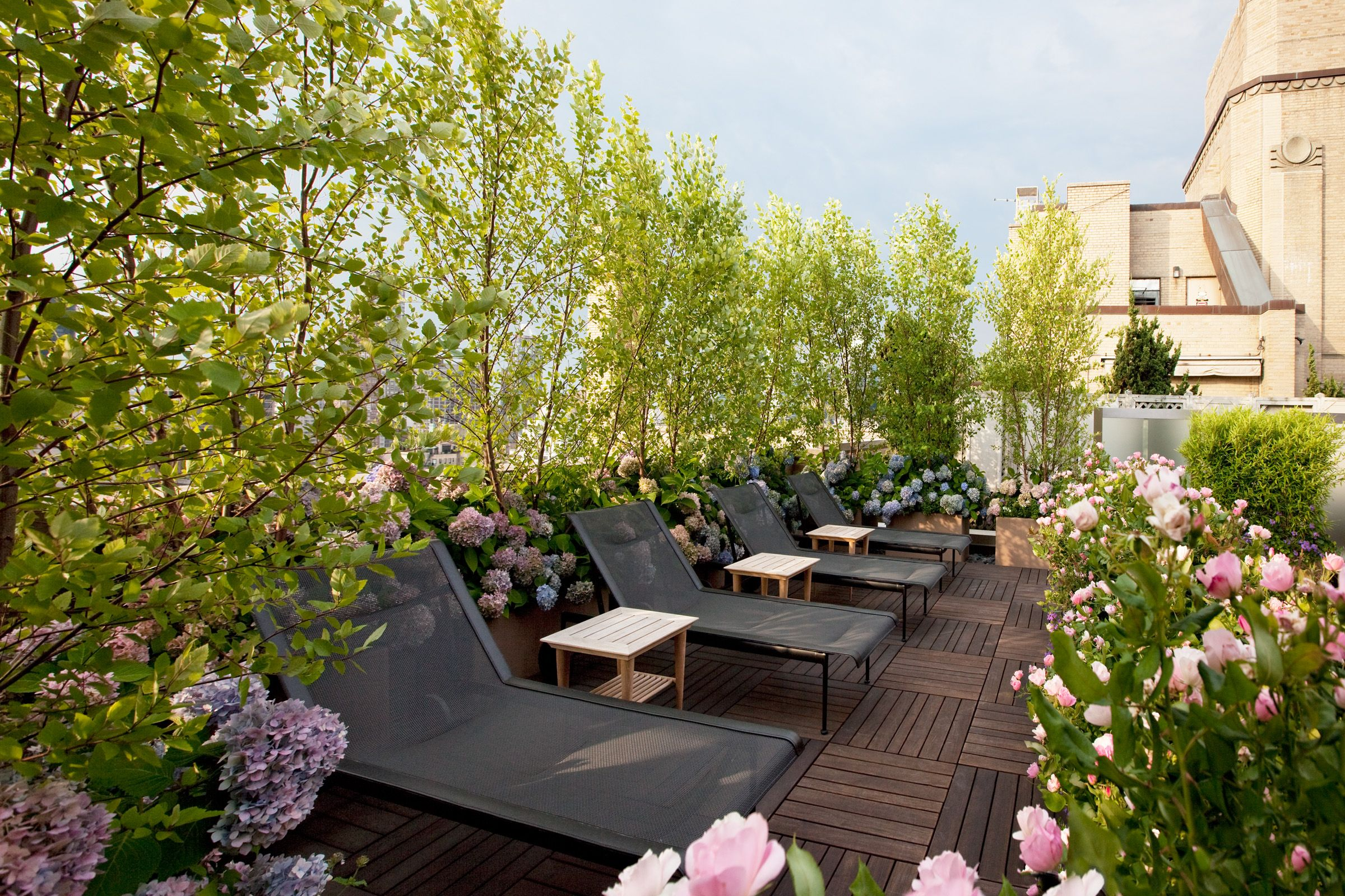 NYC Rooftop. Seating surrounded by flowering hydrangea and roses. Hollander Design.