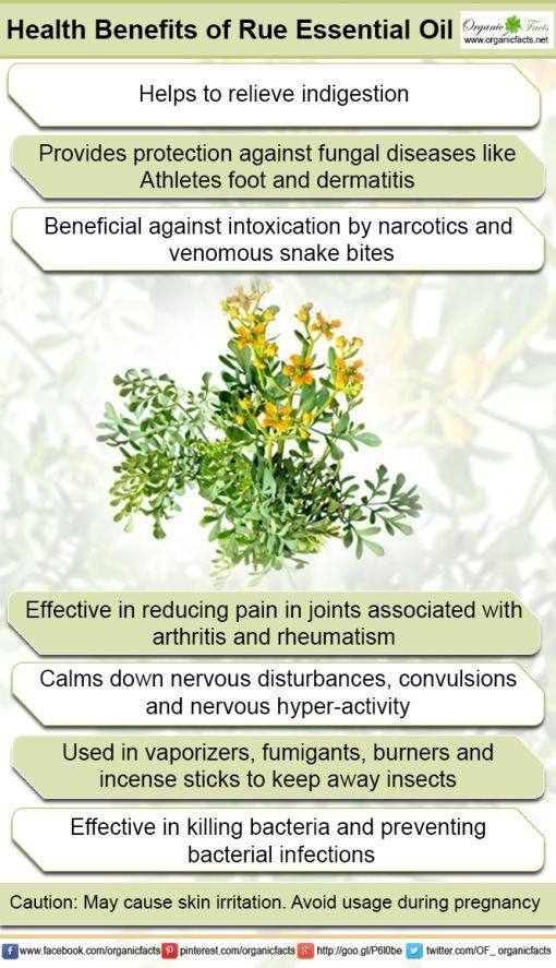 The health benefits of Rue Essential Oil can be attributed to its
