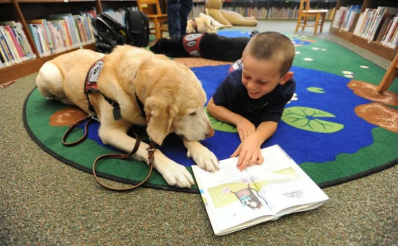 Pictures Of Children Reading To Dogs