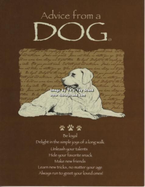 Lisa S Expert Dog Care Grooming