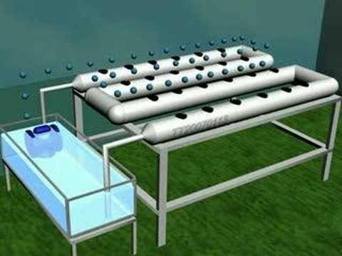 hidroponia compartido por cosmeticoslibni productos de limpieza